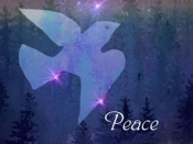 C-371 MIDNIGHT PEACE